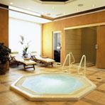 Bled – Hotel Ribno****
