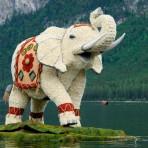 bootskorso_indischer_elefant_1_platz