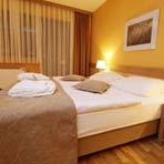 Terme Olimia – Hotel Breza**** – ZIMSKO OPUŠTANJE