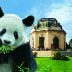 zoo schonbrunn